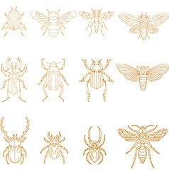 Set of Insects in vector image vector image