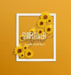 sunflower background 2 vector image
