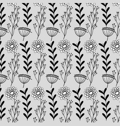 branches with leaves and flowers with petals vector image