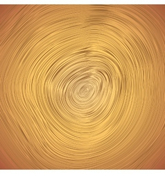 Wood texture of cutted tree trunk vector image vector image