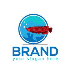 Arowana fish logo vector