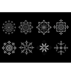 Options snowflakes ornaments vector image