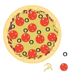 Pepperoni pizza with ingredients vector