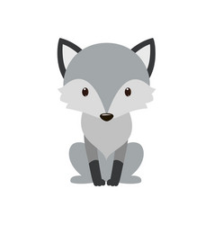 gray wolf cartoon wolf grey the nature of the vector image