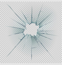 Broken and cracked glass with realistic shatters vector