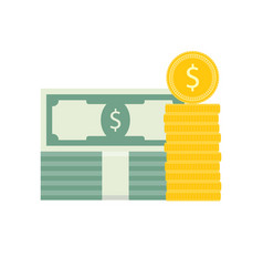capital flat coin and banknotes vector image