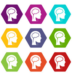 head with brain icon set color hexahedron vector image