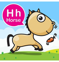 H Horse color cartoon and alphabet for children to vector image vector image