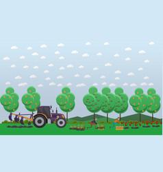 gardening concept in flat vector image vector image