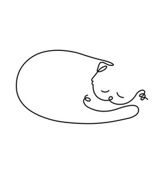 A sleeping cat drawing vector