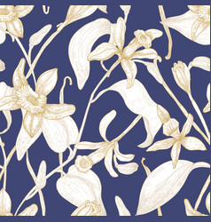 elegant seamless pattern with blooming vanilla vector image