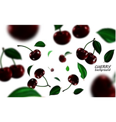 Falling black cherries elements realistic cherry vector