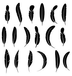 Feather Silhouette Collection Isolated vector image