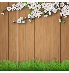 Grass and spring cherry branch on brown old wood vector