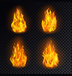 set isolated 3d fire or realistic burn flame vector image