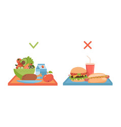 Set two trays with healthy and unhealty food vector