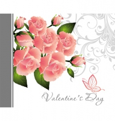 valentine rose illustration vector image