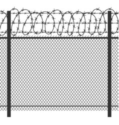 prison privacy metal fence with barbed wire vector image