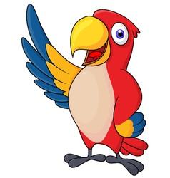 Macaw bid carton waving vector