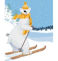 Bear skier vector image