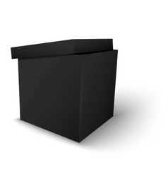 Black Package Box vector image