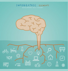 Brain infographic elements with developement vector