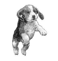 Dog 04 vector