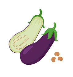 eggplant flat whole and vector image