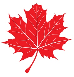 Leaf red vector