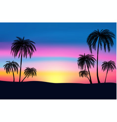 Sunset and tropical palm trees with colorful vector