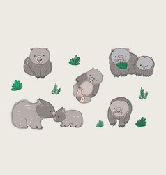 set of cute young wombat in various poses adult vector image