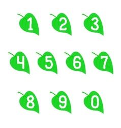 A set of numbers on the leaves vector