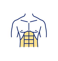 Abdominal muscles rgb color icon vector
