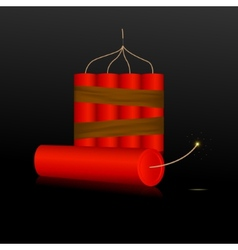 Red Dynamite on a black background vector image