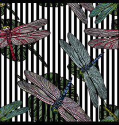 Seamless pattern with dragonfly on leaves vector