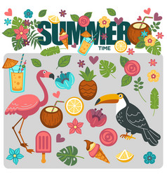 Summer poster of exotic tropical birds and flower vector