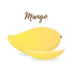 Tropical fruit - yellow mango with slices vector