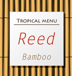 White banner hang on bamboo vector