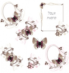 butterfly frames vector image