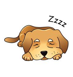 cute dog sleeping vector image vector image