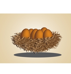 eggs in birdnest vector image