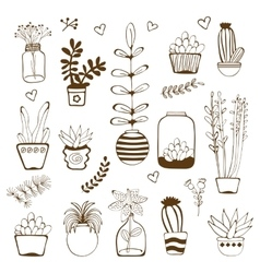 Big hand drawn set of house plants vector
