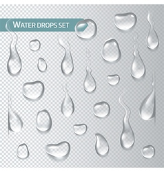 Droplets of water on a transparent background vector image vector image