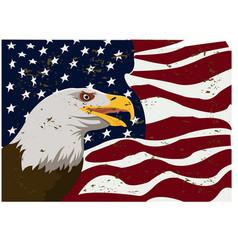 eagle flag usa flag icon vector image