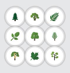 flat icon bio set of garden jungle foliage and vector image