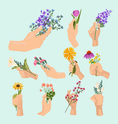 flowers in hands beauty ladies hand holding vector image
