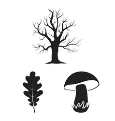 Forest and nature black icons in set collection vector