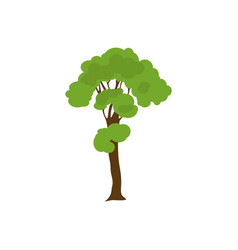 green trees icon design isolated on white vector image