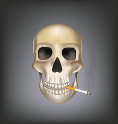 old skull smoking vector image
