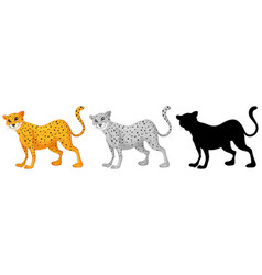 set of tiger character design vector image